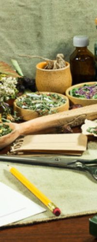 A set of healing herbs. Dried grass for use in alternative medicine, spa, herbal cosmetics, herbal medicine, preparing infusions, decoctions, tinctures, powders, ointments, butter, tea, bath.